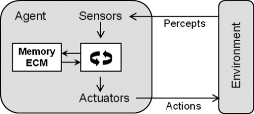 Model of an agent.Adapted and modified from2 (see text).