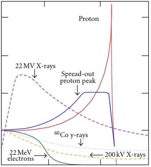 Bragg peak and Spread-Out Bragg Peak (SOBP) for a proton beam in comparison with photon and electron dose distributions.