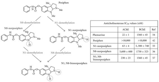 Metabolic analogs of posiphen and their respective anticholinesterase activities [60]. Posiphen is devoid of anticholinesterase activity. However, its phase 1 metabolites, N8 demethylated, N1 demethylated, and di-demethylated N1, N8-bisnorposiphen showed ex vivo AChE and BChE inhibitory activity of clinical relevance [61, 62]. The compound N8-bisnorposiphen demonstrated no AChE activity. This activity has proven to be dose limiting in human safety studies.