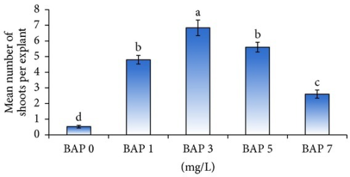 Effect of different concentrations of BAP (mg/L) on mean number of shoots per explant during shoot multiplication.