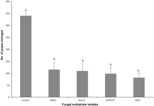 Effect of Vicia faba plants endophytically-colonized by different fungal isolates of Beauveria bassiana (S4SU1, G1LU3 and ICIPE 279) and Hypocrea lixii (F3ST1) on adult emergence of Liriomyza huidobrensis and Diglyphus isaea.Bars denote means ± one standard error at 95% CI (p = 0.05).