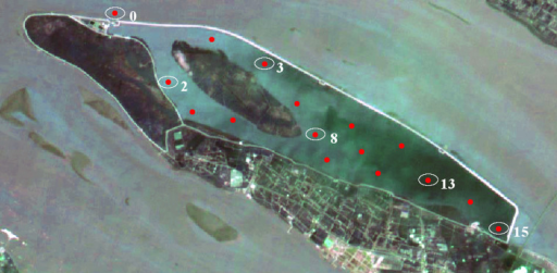 Locations and sampling sites in estuary reservoir.Six monitoring positions were marked as 0, 2, 3, 8, 13, 15 respectively. Satellite image was obtained by synthesizing the data from Satellite Environment Center, Ministry of Environmental Protection in China in free of charge in website of [http://www.secmep.cn/secPortal/portal/column/itemDetails.faces?itemid=8ae67f88272ce22801272d0f50410005] using commercial GeoStar3.0 (http://www.geostar.com.cn) and free Gimp 2.8.10 software (http://www.gimp.org/).
