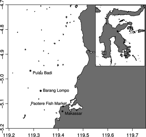 Map of southwest Sulawesi showing Pulau Badi (location of the kuda laut project) in the Spermonde Islands, Makassar, and the Paotere fish market