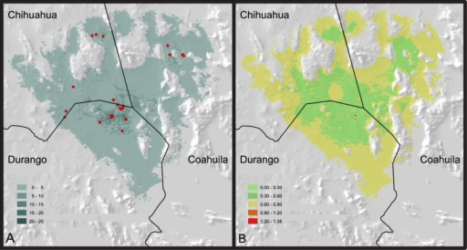 Maps showing the potential distribution and abundance of Gopherus flavomarginatus.(A) Inferred abundance for the Bolson tortoise (burrows/Km2); red dots pinpoint the sites where the abundance data for the Bolson tortoises was recorded. (B) Standard deviation of abundance.