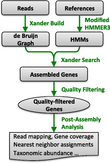 "Xander gene assembly workflow. Two types of input sequences are required: one or more metagenomic read files used to build the de Bruijn graph and one set of reference sequences for each targeted gene, for building specialized profile HMMs using a modified version of HMMER 3.0 (see the ""Implementation"" section). During the search phase, Xander uses a combined weighted assembly graph to assemble genes (contigs). After assembly, several filters are applied at the quality filter step: chimeric genes, or genes below length cutoff or HMM score cutoff are discarded, and genes are clustered at 99 % aa identity and the longest one from each cluster is chosen as the representative. The quality-filtered genes are further processed to provide coverage and abundance information"