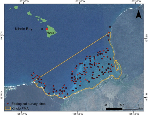Kīholo Bay study area, including spatial delineation of sampling area for creel and fish flow surveys (orange outline) and locations of transects for ecological surveys of reef fish.Background imagery shows the spatial configuration of the bay and the reef complex, and inset shows the location in the Hawaiian Islands.