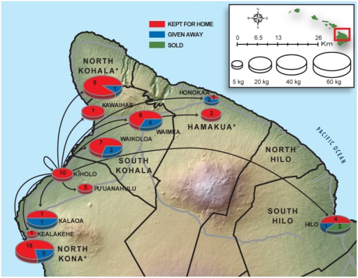 "Mapping artisanal seafood supply chains as ""fish flow"" from the Kīholo Bay coral reef fishery.Arrows indicate locations where seafood from Kīholo is consumed. Exact locations are indicated as place-names; some destinations were only available at coarser district (moku) levels (these are indicated with asterisks). Post-landings disposition is distinguished for kept (red), given away (blue), and sold (green) seafood. Pie charts are scaled to the total catch (kg) for each destination. The numbers in each pie are the number of distribution events recorded for each destination and represent only survey-recorded end-use, not the annual expanded catch. The district boundaries, Digital Elevation Model (DEM), and transportation lines were acquired from the Hawai'i state GIS portal [http://planning.hawaii.gov/gis/download-gis-data/]."