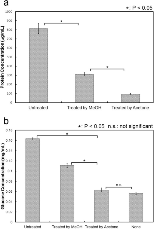 Removal of protein in cattle saliva.(a) Protein concentration in cattle saliva treated with methanol or acetone. Protein concentration was measured using Bradford protein assay. (b) Enhancement effect of cattle saliva treated with methanol or acetone. Cattle saliva treated with methanol or acetone used in the cellulose degradation assay. The reaction condition follows the basic experimental protocol. All experiments were performed in triplicate and average mean values were plotted. Error bars indicate ± standard deviations. Values labeled with asterisk are statistically different as established by Student's t-test (P < 0.05).