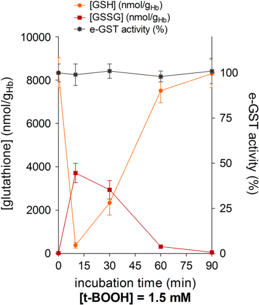 Changes of GSH, GSSG and e-GST during incubation of bovine blood with peroxide. Bovine blood (1 ml) was incubated with 1.5 mM t-BOOH, and at various times, GSH, GSSG and e-GST were measured. Experimental points are the mean of three different determinations. Error bars are the S.E.M.