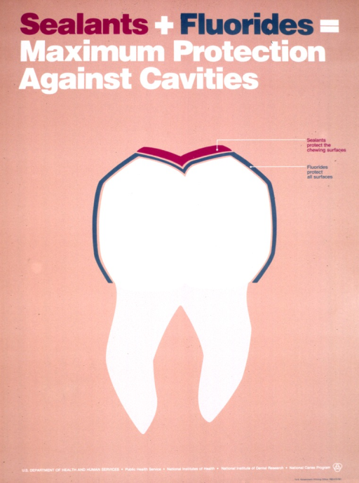 <p>Predominantly tan poster with multicolor lettering.  Title at top of poster.  Visual image is a drawing of a tooth highlighted to identify the sealant that protects the chewing surface and the fluoride that protects all surfaces.  Publisher information at bottom of poster.</p>