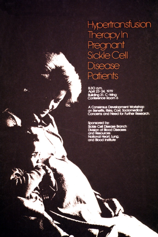 <p>The poster is in brown and tan with the title in orange print.  The image is a side view of a pregnant woman with a child seated next to her.  The date (Apr. 23-24, 1979), time, and location are listed.</p>