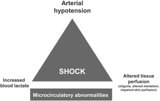 The triangular basis of circulatory shock. The full clinical picture includes the three features of hypotension, altered tissue perfusion and hyperlactatemia, whereas the underlying microcirculatory disturbances are less apparent. However, the systemic presentation is not always complete.