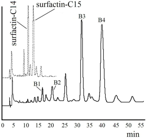 High performance liquid chromatography (HPLC) spectra of surfactin (dashed line) and surfactin-(Glu-γ, Asp-β)-hexyl ester (solid line) under the same condition.