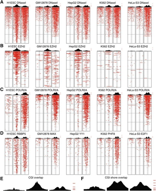 DHS and RF occupancy at UC DMRs. Aggregation plots of DHS and RF occupancy are shown for five ENCODE cell types across UC subgroup-specific DMRs stratified into patterns 1 to 3 (left to right for each DHS/RF and cell type combination). Plots are based on 10 kb for each DMR centered on the DMR midpoint. DHS/occupancy across each DMR (rows) is pseudo-colored (red) and DMRs are sorted (vertically, for each DMR pattern separately) according to the number of DHS bases within the 10 kb region. Patterns of DNaseI hypersensitive sites (A), EZH2 (B), POLR2A (C), as well as binding patterns of selected RFs (D) pseudo-colored (red) with aggregation plots on top across the different cell lines are shown across the three UC DMR methylation patterns (1 to 3). (E, F) Aggregation plots of CGI positions (E) and CGI-shore positions (F) in UC DMRs stratified into patterns 1 to 3. For aggregation plots, tic marks indicate 5%, 10%, 20%, 40%, and 60% basewise occupancy, respectively.