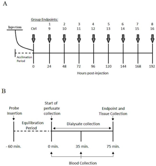 Organization of experimental groups and experimental procedures.(A) Schematic representation of the experimental groups receiving an injection of 1.5 mg kg-1 dose (groups 1–8) or 4.5 mg kg-1 (groups 9–16) of DOX IP. A sham injection is administered to the control group (Ctrl). (B) Representation of the experimental proceedings for dialysate, blood and tissue collection following microdialysis probe insertion and carotid artery cannulation.