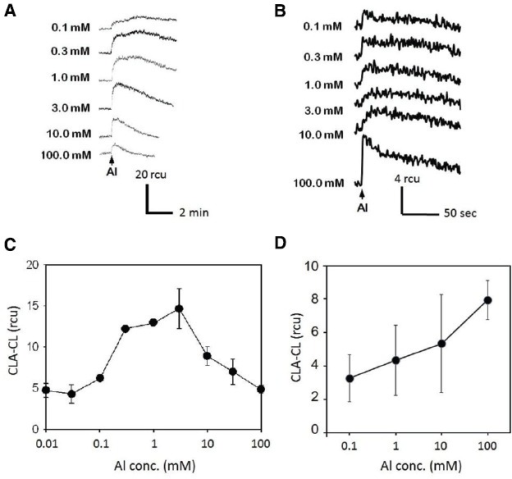 Effect of Al3+ concentration on O2•– induction. Typical records of Al3+-induced O2•– measured with CLA-CL in the cell suspension cultures of tobacco (A) and rice (B). Effect of Al3+ concentration on O2•– generation (C, tobacco; D, rice). Vertical error bars, SD; n = 3.