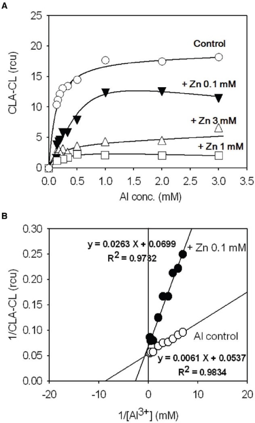 Competitive inhibition of the Al3+-induced O2•– generation by Zn2+ in tobacco cell suspension culture. (A) Effect of Zn2+ on Al3+-induced O2•– generation. (B)In vivo Lineweaver–Burk plot analysis.