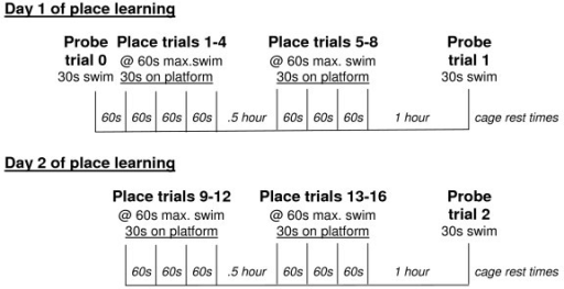 Diagram of the protocol for reference memory testing over a two day period, including both place learning and probe trials. s, seconds; max., maximum.