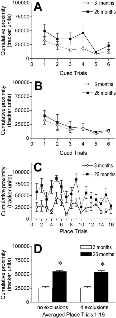 Effects of age on cued and reference memory tasks with cued trials conducted first. A and B: Graphs showing the performance, measured as cumulative proximity in tracker system units, of 3 and 26 month old mice within cued trials in the water maze with all animals included in analysis (A) and with 4 aged mice excluded for poorer performance on cued trials than 3 standard deviations from the mean performance in the young (B). C: Graph showing the performance, measured as cumulative proximity in tracker system units, of 3 and 26 month old mice within individual place learning trials with 4 aged mice excluded. D: Graphs showing the performance, measured as cumulative proximity in tracker system units, of 3 and 26 month old mice averaged across all place learning trials. Results are for both when all mice were included (no exclusion) and when 4 old mice were excluded (4 exclusions) from analysis. * p < .05 for difference from 3 month old mice (analysis of variance and Fisher's protected least significant difference post-hoc analysis). A and D (no exclusions): n = 8 for 3 month olds and n = 10 for 26 month old mice. B, C, and D (4 exclusions): n = 8 for 3 month olds and n = 6 for 26 month old mice. Error bars represent SEM.