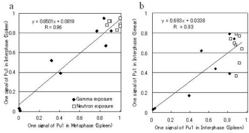 Comparison of the frequency of cells with one signal of PU.1 and 2 signals of the centromere of chromosome 2 in radiation-induce myeloid leukemia mice. Correlation between the frequency of cells showing a loss of one copy of PU.1 in spleen metaphase cells and that in spleen interphase cells (a) and between the frequencies in spleen interphase cells and that in blood cells (b). The some points were superimposed.