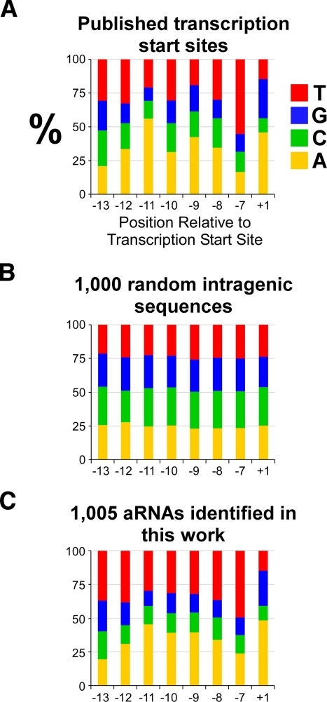 (A) Distribution of nucleotides at the transcription start site (+1) and positions upstream for transcripts with published start sites. Equivalent distributions are shown for 1,000 random intragenic sequences (B) and the 1,005 putative aRNAs identified in this work (C).