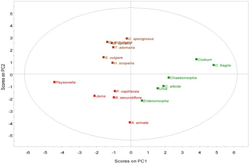 PCA of the fatty acid composition of macroalgae showing the data scores labeled by phylum. Green—Chlorophyta; Brown—Phaeophyta; Red—Rhodophyta.