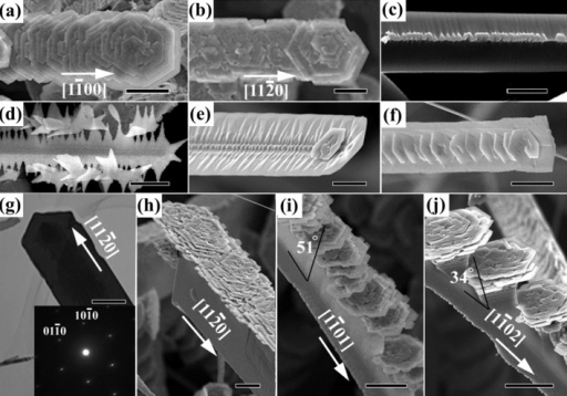 SEM images of (a) Belt-like hierarchical structures along , (b) along with flowers opening toward the [0001] direction. (c) Some particles are observed on the ridge of the  side of the belt-like hierarchical structure. (d) – (e) Developing morphologies of belt-like hierarchical structures. (f) TEM image and SAED showing that the belt is a single crystal with the spine along and its projection plane perpendicular to [0001]. (g) – (j) are SEM images of flowers grown on thick rectangular belts along the ,  and  directions. The scale bars are 10 μm for (a), (b), (d) and (h) – (j), 5 μm for (e), 2 μm for (c) and (f), and 200 nm for (i).