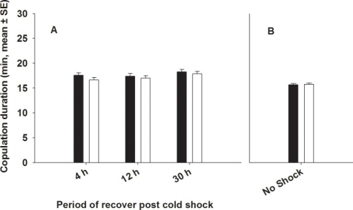Effect of cold shock (A) or no shock (B) on copulation duration. (A) We assayed copulation duration 4 h, 12 h and 30 h post cold shock. Closed bars represent FCB and open bars represent FSB populations. Selection, period and Selection × period had no significant effect on copulation duration. (B) Under no-shock treatment, there was no significant difference in copulation duration between FSB and FCB males.