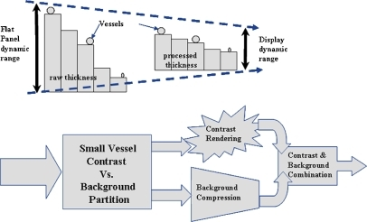An illustration of how the DRM algorithm compresses the large dynamic range of the original image while preserving the contrast consistency/visibility of structures of interest