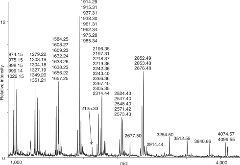 Mass spectrum of T. thermophilus 16S rRNA digested with RNase T1. Assigned masses are of singly protonated digestion products, these masses were used in the subsequent database search.