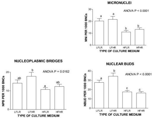 High riboflavin tends to increase genome instability when folate status is low. Folate-riboflavin interactive effects on CBMNcyt assay DNA damage biomarkers. It is evident from these results that folate deficiency tends to increase micronuclei, nucleoplasmic bridges and nuclear buds and these effects are further aggravated by high riboflavin in a low folic acid background. For more details refer to Kimura et al 2004 [28]. L, low; H, high; F, folic acid; R, riboflavin.