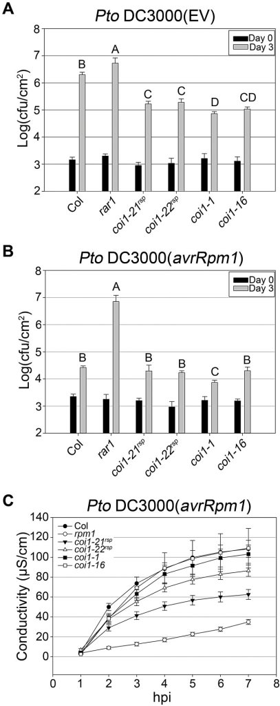 coi1rsp alleles exhibit enhanced basal defense and additionally weakly suppress RPM1 HR function.(A–B) Bacterial growth analysis of Pto DC3000(EV) (A) and Pto DC3000(avrRpm1) (B). Bacteria were hand-infiltrated into leaves of each indicated genotype and counted at day 0 and day 3. Error bars represent 2× SE. Pairwise comparisons for all means for bacterial growth on day 3 were performed with One-Way ANOVA test followed by Tukey-Kramer HSD at 95% confidence limits. (C) Conductivity measurements after inoculation with high concentration Pto DC3000(avrRpm1) (5×107 cfu/ml). Error bars represent 2× SE. The pathogen growth and HR assays were performed independently a minimum of three times with similar results.