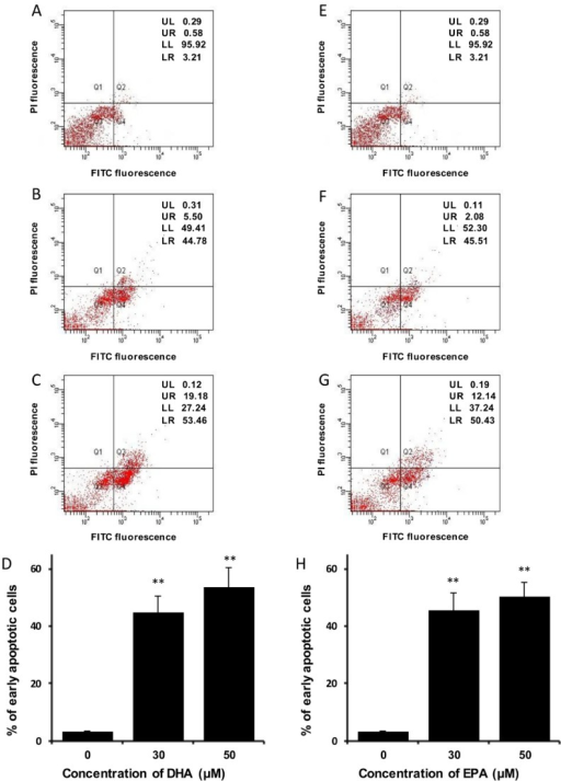 DHA and EPA trigger phosphatidylserine externalization in LA-N-1 cells. (A–D) LA-N-1 cells were incubated with ethanol control (A), 30 or 50 µM DHA (B, C) for 48 hours. (E–H) LA-N-1 cells were incubated with ethanol control (E), 30 or 50 µM or EPA (F, G) for 48 hours. After incubation, the cells were stained by Annexin V-GFP fusion protein and PI, and the fluorescence intensity was measured by flow cytometry. The results are quantified and expressed as mean values ± SD (D, H). ** p < 0.01.
