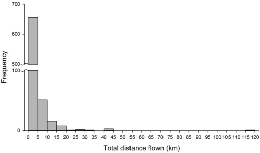 Frequency distribution of flight distance by Halyomorpha halys measured on flight mills for 22 h (N = 739).