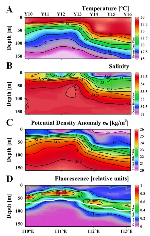 Vertical distribution of hydrologic parameters, nutrients and in situ fluorescence along the Y0 during the cruise.(A) Temperature [°C], (B) Salinity, (C) potential density anomaly [kg m-3], (D) fluorescence [relative units]. The bright contour denotes the euphotic depth [m], and the gray one denotes the mixed layer depth [m].