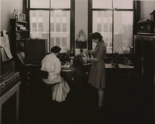 <p>Interior view: narrow room with two large windows, a table on the left, and cabinets on the right; in the background a woman sits at a bench looking into a microscope; another woman stands to the right.</p>