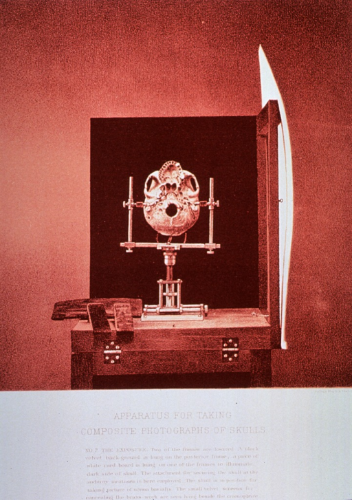 <p>Black and white print of a close-up of the bottom of a skull framed in an apparatus ready for photography. This is print no. 7 that appears in &quot;On composite photography as applied to craniology; on measuring the cubic capacity of skulls, memoirs of the National Academy of Sciences; volume 3, 14th memoir&quot; by J.S. Billings and Washington Matthews.</p>