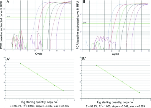 Real-time PCR amplification plots and standard curves for Acanthamoeba polyphaga mimivirus (APM)-396 (A, A′) and APM-596 (B, B'). Linear amplification was achieved over 6 logs for both assays over 5 × 106 to 5 × 101 copies of plasmid DNA. RFU, relative fluorescence units.