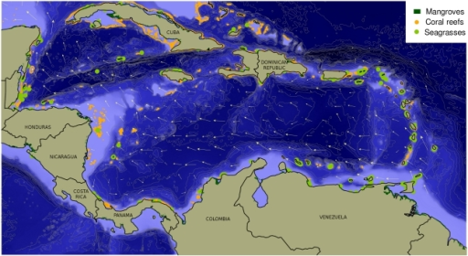 Bathymetry, main currents, and ecosystems of the Caribbean Sea.Arrows representing average surface ocean currents were derived from the Hybrid Coordinate Ocean Model, or HYCOM (http://hycom.org). Coral reef data were obtained from the World Resources Institute (http://www.wri.org/publication/reefs-risk-caribbean). Data on seagrasses were extracted from version 2.0 of the global polygon and point dataset compiled by UNEP World Conservation Monitoring Centre (UNEP-WCMC), 2005. Mangrove data were extracted from version 3.0 of the global polygon dataset compiled by UNEP-WCMC in collaboration with the International Society for Mangrove Ecosystems (ISME), 1997.