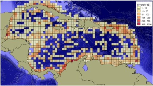 Spatial distribution of sites (small dots) and number of species recorded (squares) in the Caribbean.Based in data contained in the OBIS (Ocean Biogeographic Information System) database. Taxa included in the OBIS database were: bacteria, protozoa, microalgae, macroalgae, angiosperms, sponges, cnidarians, gnathostomulids, nematodes, kinorynches, sipunculans, mollusks, annelids, pogonophorans, arthropods, brachiopods, chaetognaths, echinoderms, tunicates, lancelets, fishes, reptiles, birds, mammals.