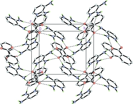 Part of the crystal packing of the title compound. Dashed lines indicate hydrogen bonds.