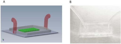Microfluidic based testing device.(A) Sketch of the microfluidic device; (B) Image of the microfluidic device.