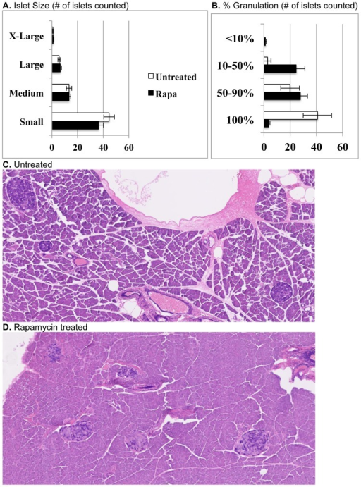 Effect of rapamycin on pancreatic islet morphology in NONcNZO10 mice.(A) Islet numbers and size variability do not differ between untreated and rapa-treated groups. (B, C) Islets in untreated mice are mostly well granulated, but roughly 38% of islets show some degranulation. (B, D) Islets in rapa-treated mice show more extensive degranulation and some fibrous replacement with occasional fibrous encapsulation. Sections were stained with aldehyde fuchsin.