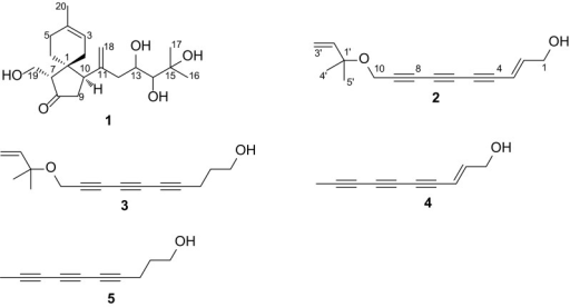 Structures of compounds 1–5