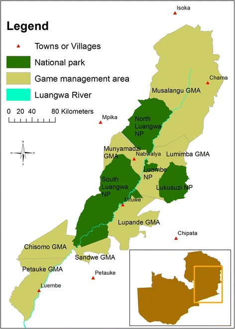 Map of the national parks and game management areas of the Luangwa Valley. Inset is an outline of the national boundary of Zambia showing the location of the Luangwa Valley.