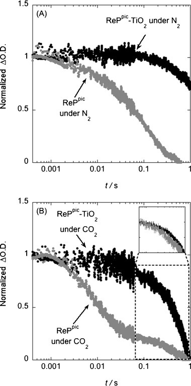 Transient absorption decays of the reduced intermediate ReP− probed at 500 nm after photoexcitation of the catalyst with 415 nm light (ca. 300 μJ cm−2, 0.5 Hz repetition rate) in the presence of a sacrificial electron donor TEOA (1 m). A) RePpic in solution and anchored onto TiO2 under N2; B) RePpic in solution and anchored to TiO2 under CO2 with an inset showing a second normalisation of the kinetics of the slow phase for both systems.