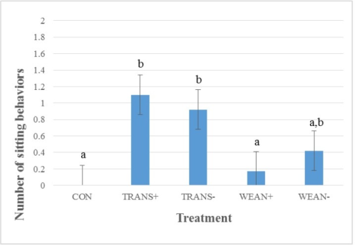 Least squares means ± SEM for number of sitting behaviors for treatment groups during a 32 h transport study (p < 0.01). Treatments: not weaned, not transported (CON; n = 24); weaned, not transported, provided feed and water (WEAN+; n = 24); weaned, not transported, and not provided feed and water (WEAN−; n = 24); weaned and transported, provided feed and water (TRANS+; n = 24); and weaned and transported, not provided feed and water (TRANS−; n = 24). a,b Means with different superscripts differ at p < 0.05.