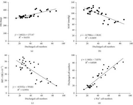Correlation analysis. (a) Positive correlation between c-Fos positive cells and discharged cell numbers in CA1 region; (b) positive correlation between HR and discharged cell numbers; (c) negative correlation between MAP and discharged cell numbers; and (d) negative correlation between RPP and discharged cell numbers.