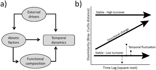 Conceptual framework for temporal dynamics.In a) a conceptual framework shows how landscape and local factors can affect temporal dynamics. Landscape scale external drivers can influence temporal dynamics directly, or can interact with local scale abiotic factors, creating spatial variation in temporal dynamics. Furthermore, abiotic factors can influence temporal dynamics directly, or indirectly via environmental filters that drive local compositional patterns that are functionally distinct subsets of the regional species pool. In b) a framework (modified from [26]) for quantifying different types of temporal variation shows how change can be either directional or stable, and stable changes can occur either via high compositional change in composition, or via large temporal fluctuations in the amount of compositional dissimilarity. Directional change is quantified using the regression slope of the relationship between compositional dissimilarity and the square root of the time lag (or interval between sampling points) and compositional change is quantified using the average dissimilarity values for a plot. Temporal fluctuation is quantified using the root mean square of the residuals from the linear regression fit between dissimilarity and time lag. Temporal fluctuation reflects the amount of change in composition that occurs irrespective of directional change. This metric summarizes the variability in dissimilarity, and can have a large value even when the slope of the regression relationship is zero. Small values indicate high predictability in temporal variation which could occur either due to predictable directional change or constant compositional change where the amount of community change is similar regardless of time lag between sampling points. Large values indicate large fluctuations that are not well predicted by the time interval between sampling points.