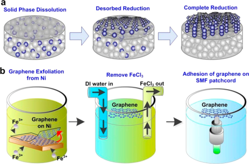 Graphene precipitation from Ni substrate and graphene adhesion on the SMF patchcord.(a) The process of graphene precipitation from Ni substrate. (b) The transfer process of graphene from Ni substrate to the SMF patchcord.